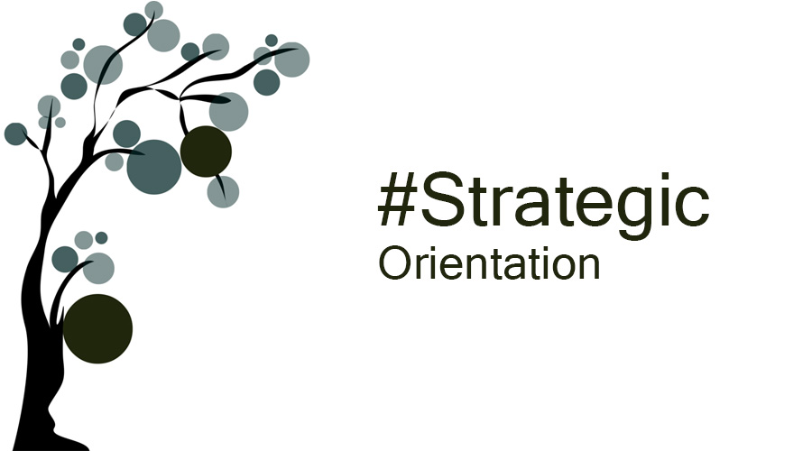 Strategic Orientation in life