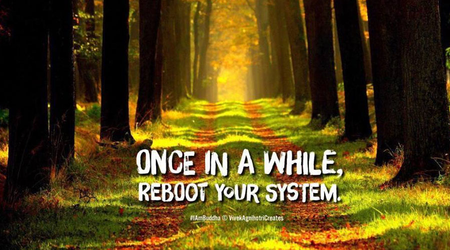 How to reboot your life?
